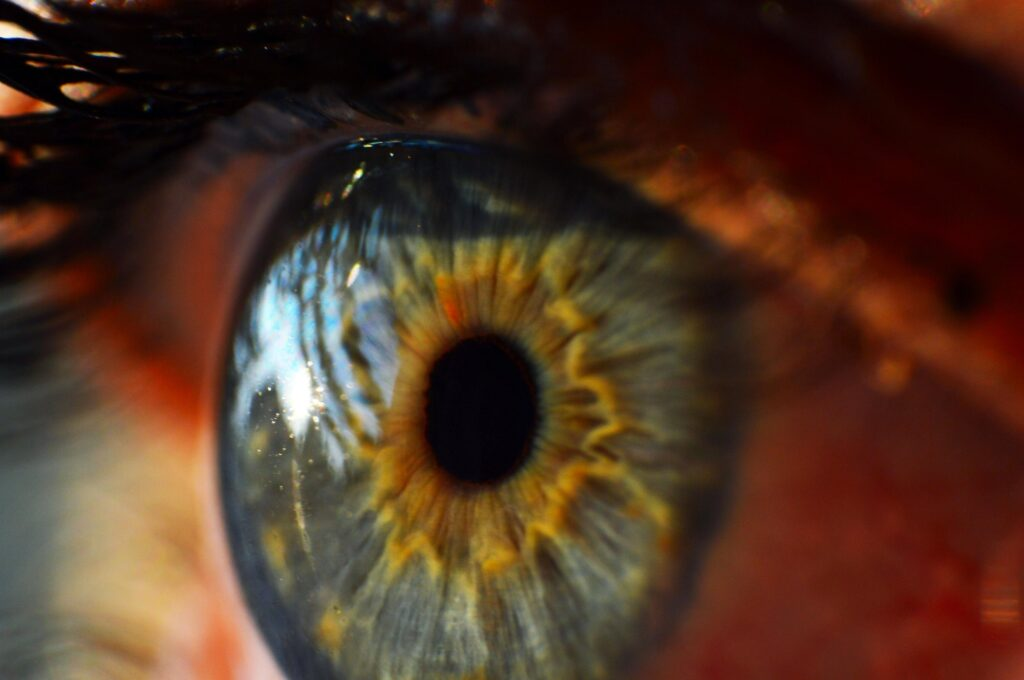 photo d'un oeil de pres